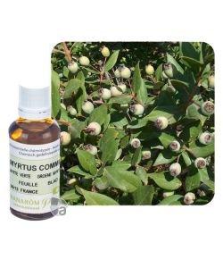 Myrte à cinéole / verte (Myrtus comm.) BIO, 30ml