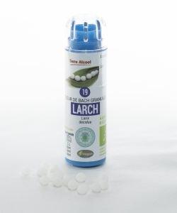 Mélèze - Larch (n°19) SANS ALCOOL BIO, 130granules