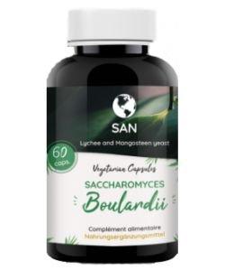 Probiotiques Saccharromyces Boulardii