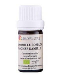 Camomille Romaine (Chamaemelum nobile) BIO, 10ml