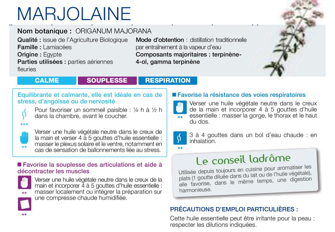 HE Marjolaine
