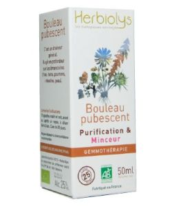 Bourgeon de bouleau pubescent bio - Herbiolys - 50ml